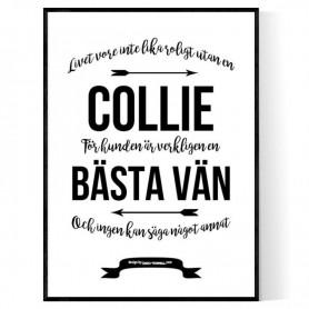 Livet Med Collie Poster