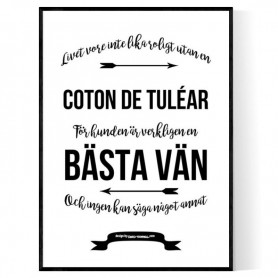 Livet Med Coton de Tuléar Poster