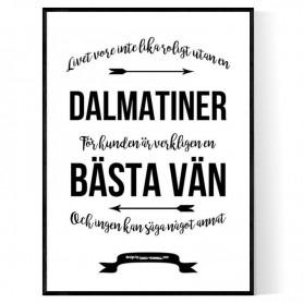 Livet Med Dalmatiner Poster