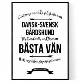 Livet Med Dansk-Svensk Gårdshund Poster