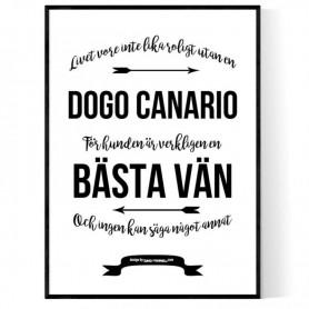 Livet Med Dogo Canario Poster
