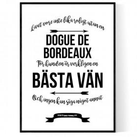 Livet Med Dogue De Bordeaux Poster