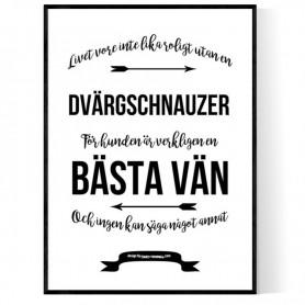 Livet Med Dvärgschnauzer Poster