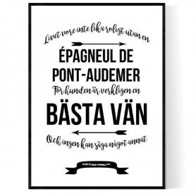 Livet Med Épagneul de Pont-Audemer Poster
