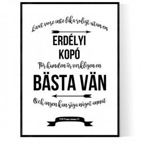Livet Med Erdélyi Kopó Poster