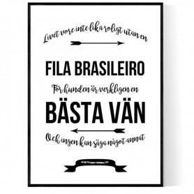 Livet Med Fila Brasileiro Poster
