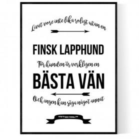 Livet Med Finsk Lapphund Poster