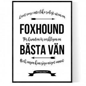Livet Med Foxhound Poster