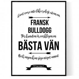 Livet Med Fransk Bulldogg Poster