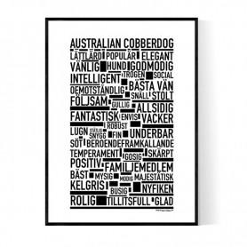 Australian Kelpie Poster