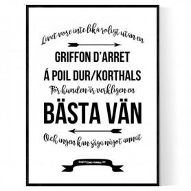 Livet Med Griffon d'arret à Poil dur/korthals Poster