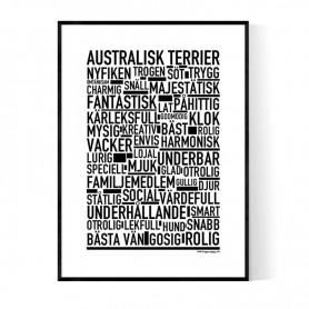 Australisk Terrier Poster