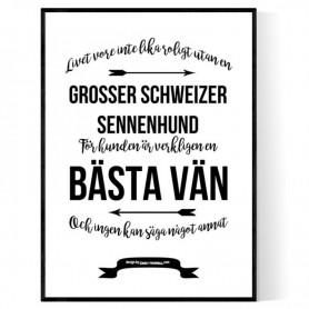 Livet Med Grosser Schweizer Sennenhund Poster