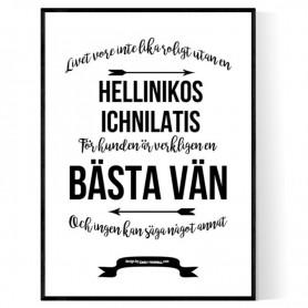 Livet Med Hellinikos Ichnilatis Poster