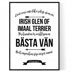 Livet Med Irish Glen of Imaal Terrier Poster