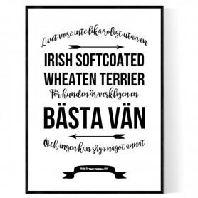 Livet Med Irish Softcoated Wheaten Terrier Poster