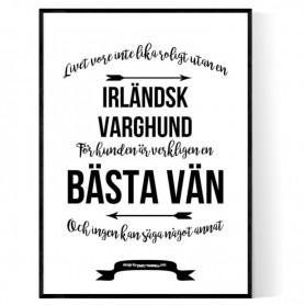 Livet Med Irländsk Varghund Poster