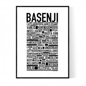 Basenji Poster