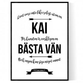 Livet Med Kai Poster