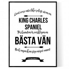 Livet Med King Charles Spaniel Poster