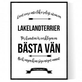 Livet Med Lakelandterrier Poster