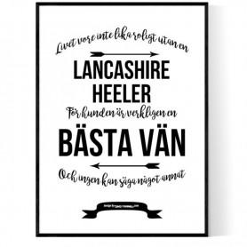 Livet Med Lancashire Heeler Poster