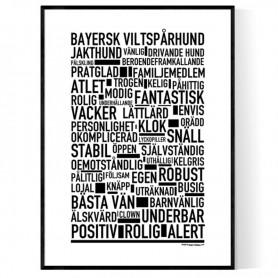 Bayersk Viltspårhund Poster