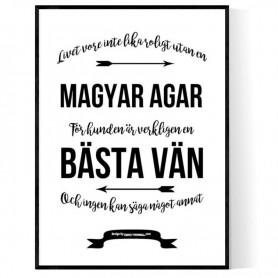 Livet Med Magyar Agar Poster