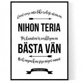 Livet Med Nihon Teria Poster
