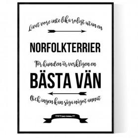 Livet Med Norfolkterrier Poster