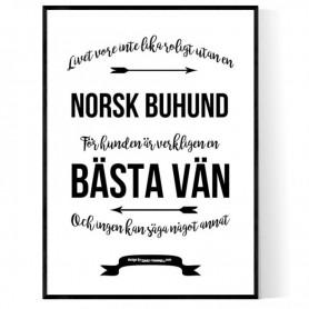 Livet Med Norsk Buhund Poster