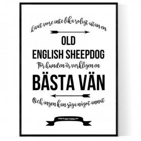 Livet Med Old English Sheepdog Poster