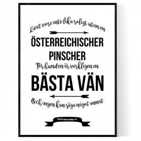 Livet Med Österreichischer Pinscher Poster
