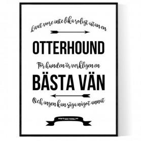 Livet Med Otterhound Poster