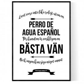 Livet Med Perro de Agua Español Poster