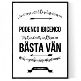 Livet Med Perro Sin Pelo Del Perú Poster