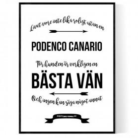 Livet Med Podenco Canario Poster