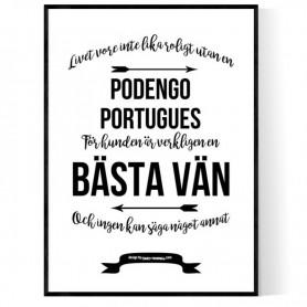 Livet Med Podengo Portugues Poster
