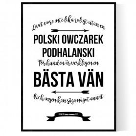 Livet Med Polski Owczarek Podhalanski Poster