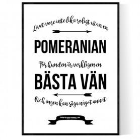 Livet Med Pomeranian Poster