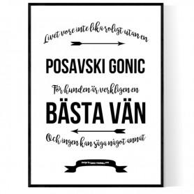 Livet Med Posavski Gonic Poster