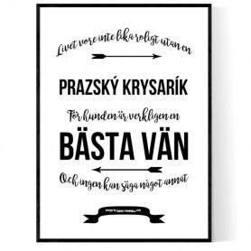 Livet Med Prazský Krysarík Poster