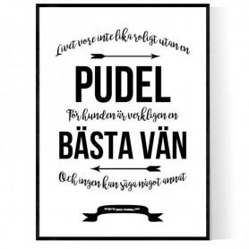 Livet Med Pudel Poster