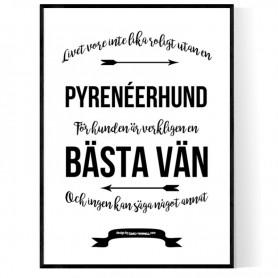 Livet Med Pyrenéerhund Poster