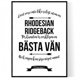 Livet Med Rhodesian Ridgeback Poster