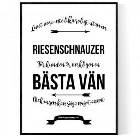 Livet Med Riesenschnauzer Poster