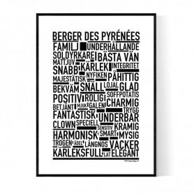 Berger Des Pyrénées Poster