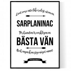 Livet Med Sarplaninac Poster