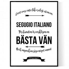 Livet Med Segugio Italiano Poster