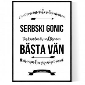 Livet Med Serbski Gonic Poster